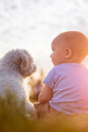 Children and Pets: The Benefits of Growing Up With Them