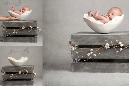 Baby Photoraphy Trends - Bump Bowls